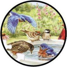 Puzzel - Badderende vogeltjes - 35 stukjes