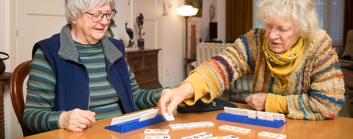 Goede Spelplus: leuke spellen voor ouderen en dementerenden OI-75